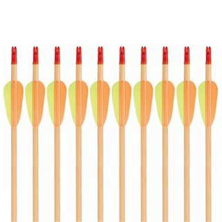 Wooden Recreational Arrow Multi-Pack 10