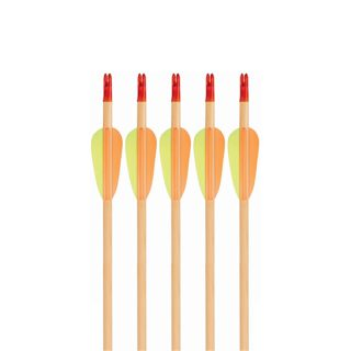 Wooden Recreational Arrow Multi-Pack 5